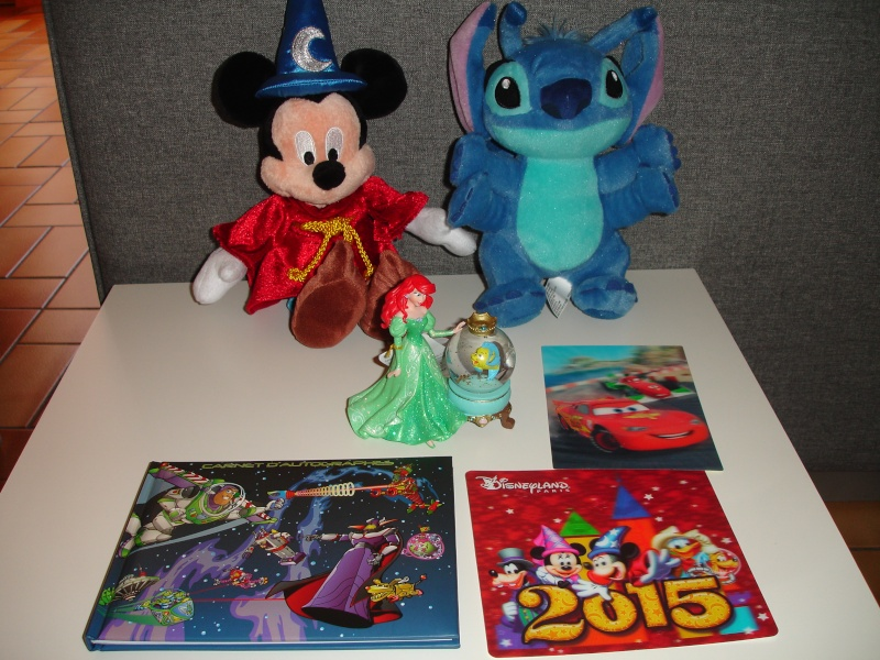 Petites vacances chez Mickey du 01/03/15 au 03/03/15 et une nuit, deux jours du 19 au 20 Octobre 2015 ( page 6 ) - Page 3 Dsc05713