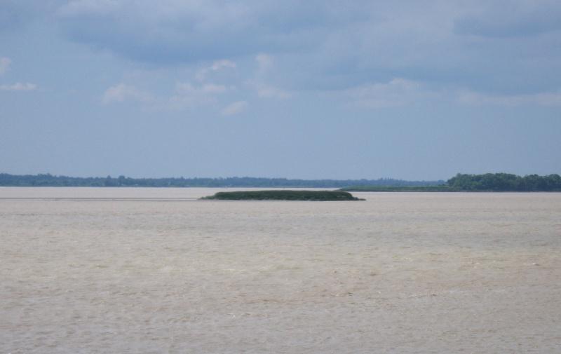 Les îles de l'estuaire de la Gironde - Gironde  - France Img_3512