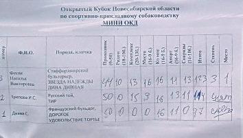 2-3 мая Кубок Новосибирской области по О К Д + З К С, (САСТ) 20992111
