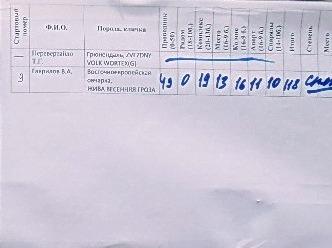 2-3 мая Кубок Новосибирской области по О К Д + З К С, (САСТ) 20992114