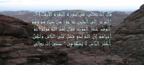 قصــــــــــــــــــــــة حزقيل 2012-647