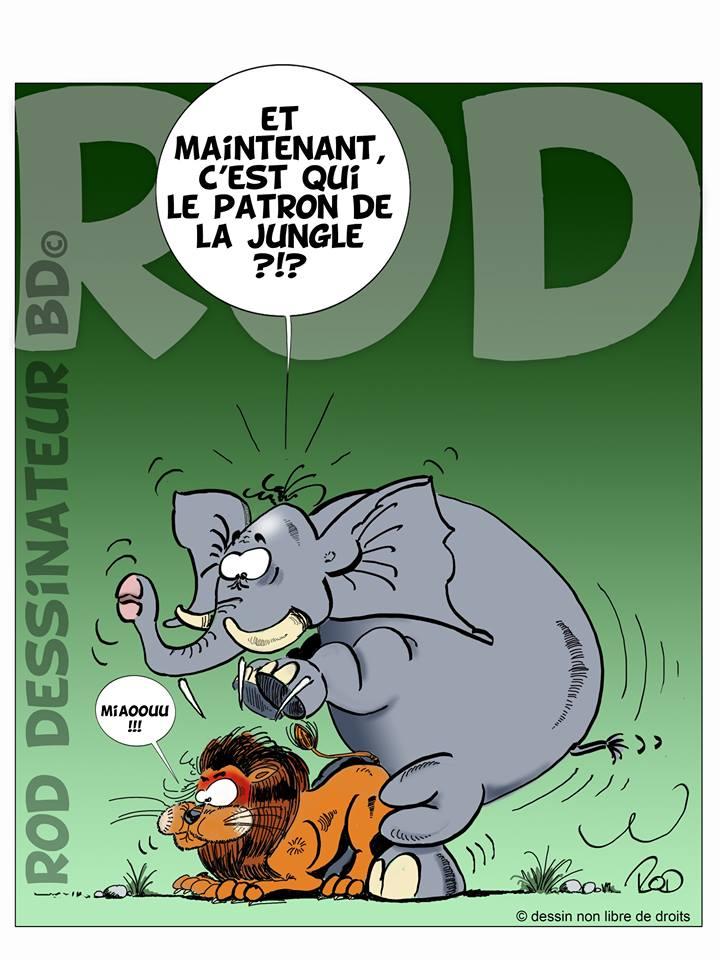 de L'humour ça continue - Page 28 17523410