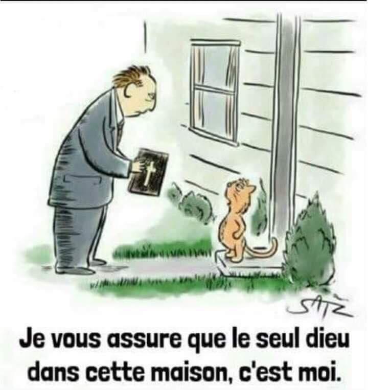 de L'humour ça continue - Page 28 78087410