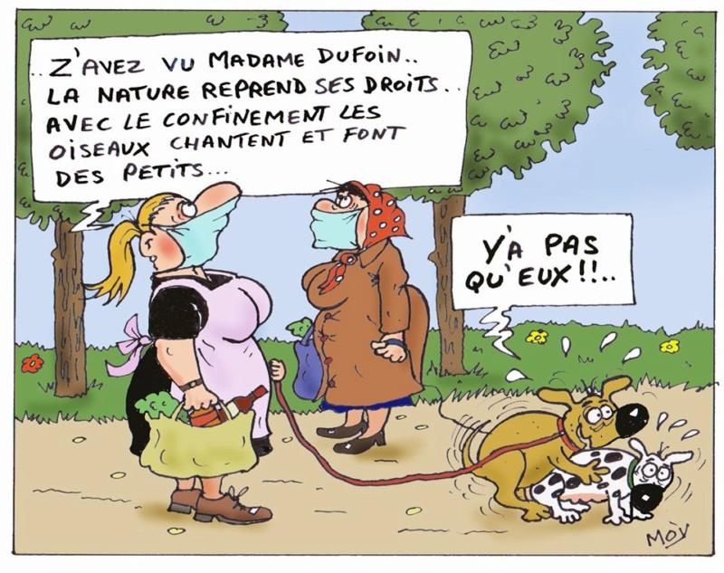 de L'humour ça continue - Page 39 92978910