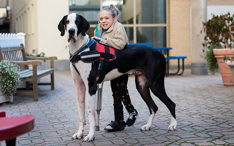 Six chiens ont refusé d'abandonner Luis, leur maître sans-abri Bella_10