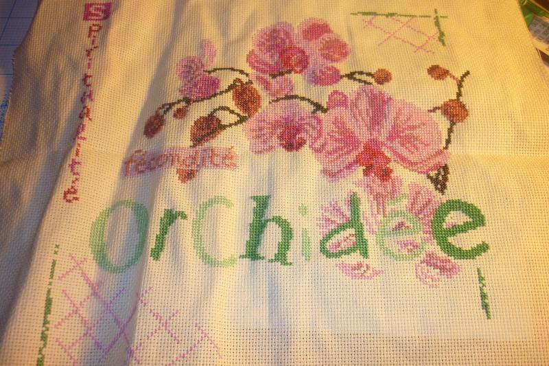 SAL Lilipoint Orchidée - FINI - Page 29 P1080770