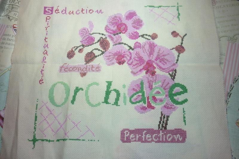SAL Lilipoint Orchidée - FINI - Page 32 P1080775