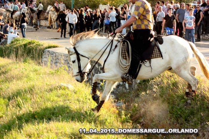 ..........  11..04..2015....  DOMESSAGUE Img_0016