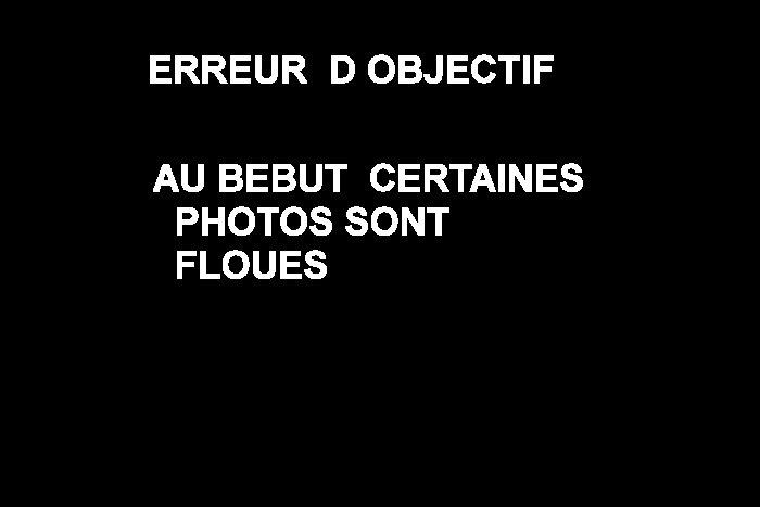 05...04..2015...MAURESSARGUES Maures10