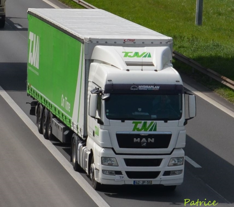 TJV  Transportes Joaquim Vilar  (Sabugal) 64pp11