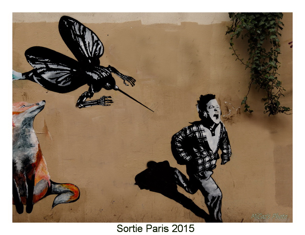 Sortie ANNIVERSAIRE 2015 PARIS 1I AVRIL. K3mc6810