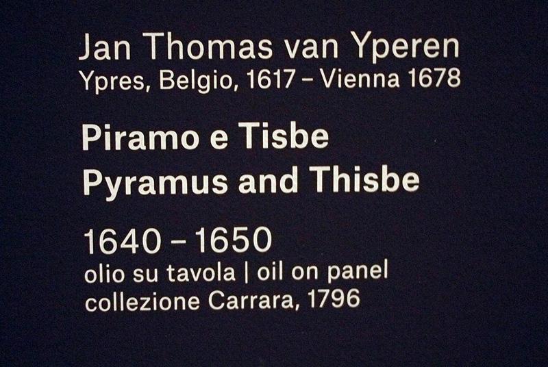 Riapre a Bergamo l'Accademia Carrara P4249415