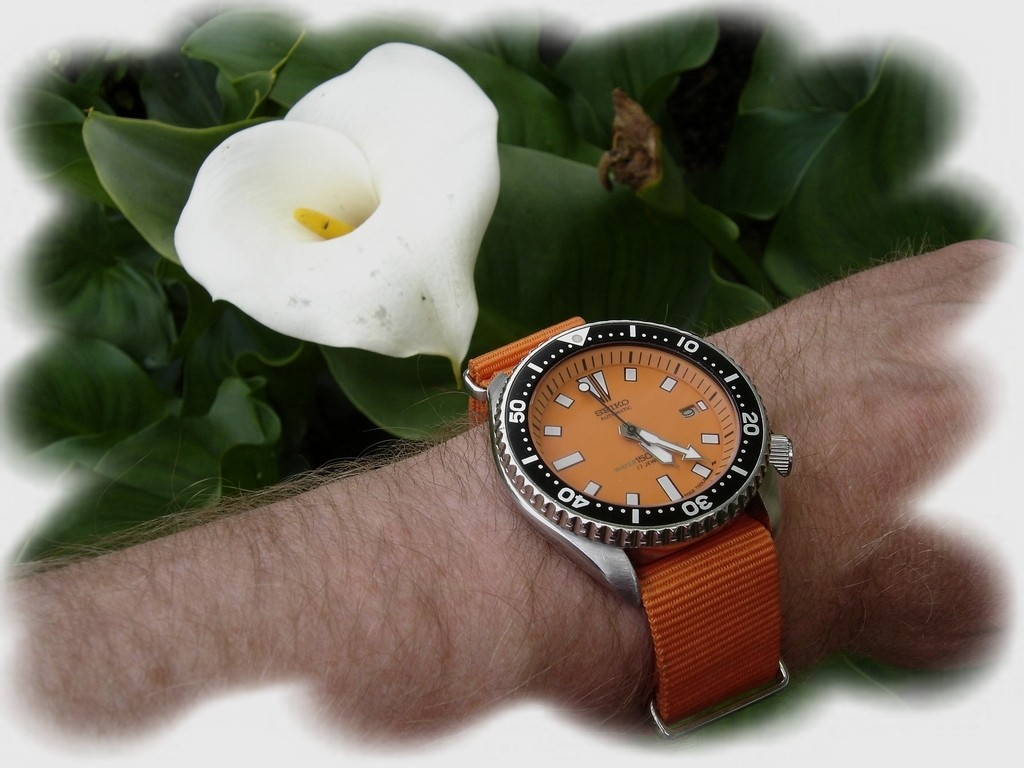 La montre du vendredi, le TGIF watch! - Page 2 Rtdsc010