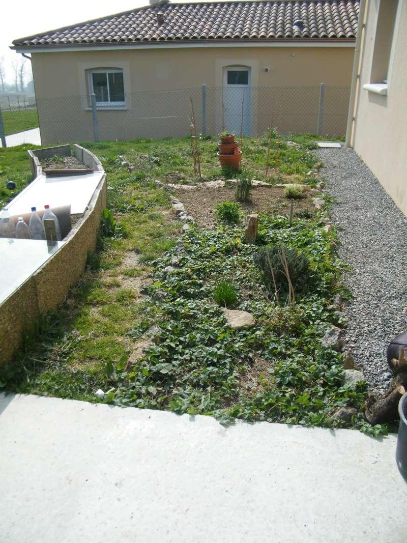 Mon jardin au commencement!  Dscf6112