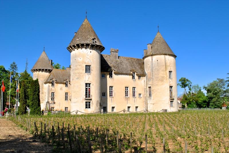 CROSSFIRE TOUR 2015 : [8-9-10 Mai 2015] Bourgogne, Vins et Fromages au détour des vignes - Page 8 Dsc_0034