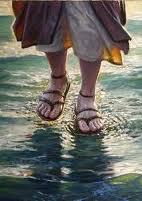 Mes nouvelles chaussure de wading Images11