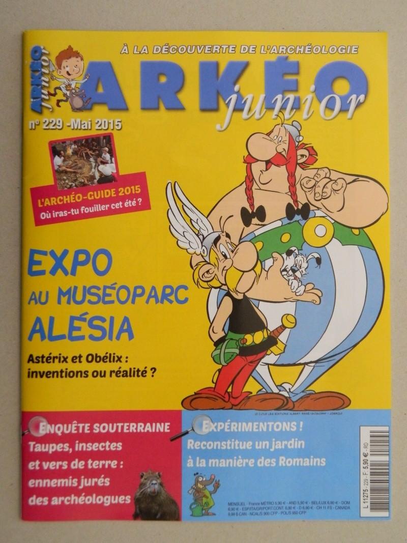 La Collection d'Objets d'Astérix de Benjix - Page 11 Dscn1426
