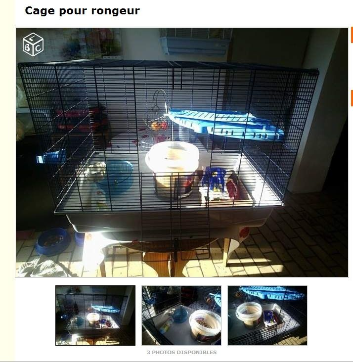 Conseil Cage Zefef10
