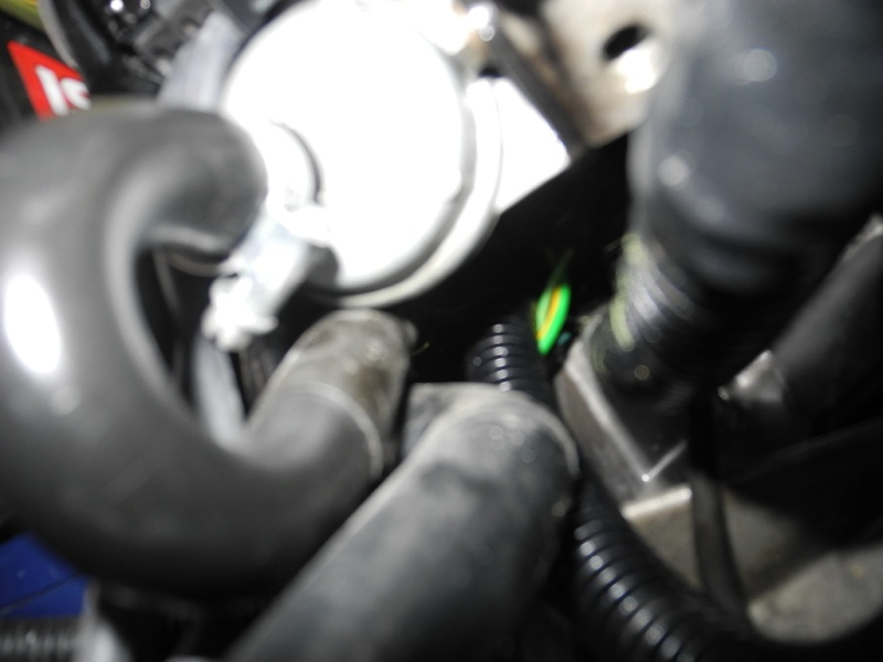 Sonde température d'eau Dscn2411