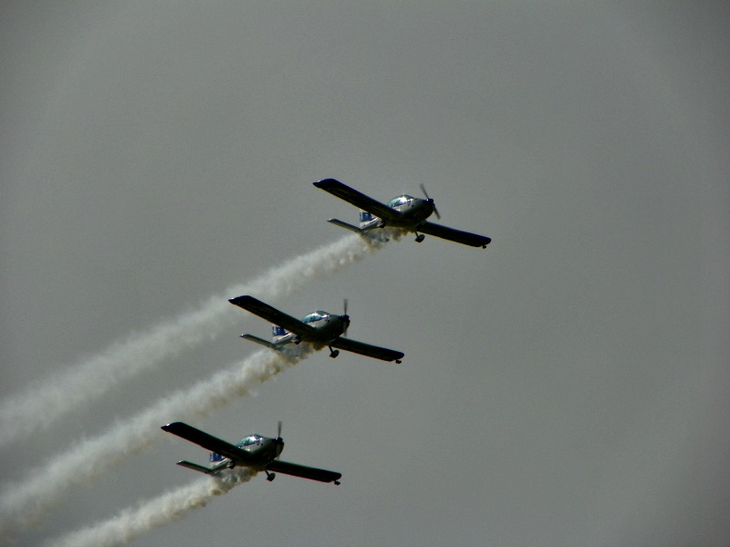 Osa volare con il WEFLY TEAM!! 101_0513