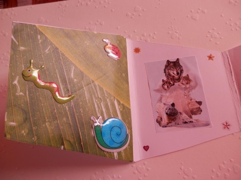 cartes de marmotte P5160011