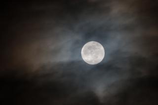 Mond - wellcome John_r10