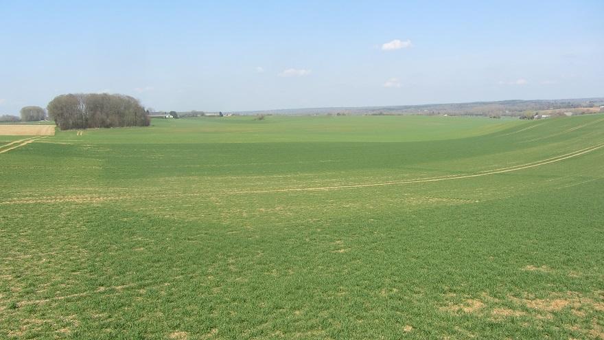 suivis blé 2020 - Page 3 01130