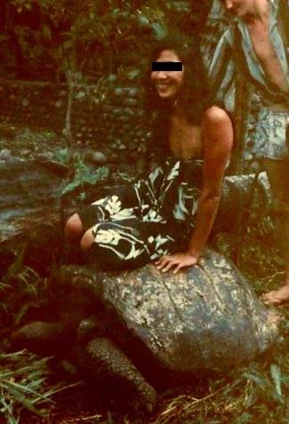 [CAMPAGNES C.E.P.] TAHITI - TOME 2 - Page 15 Cavali10