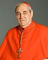 Le Cardinal Turcotte n'est plus Turcot10