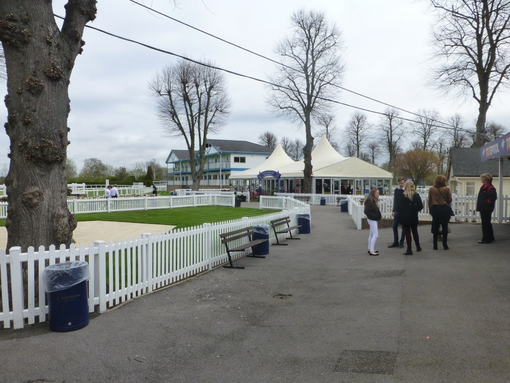 At the Races 00710