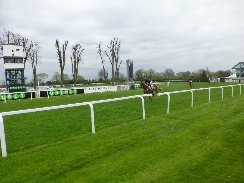 At the Races 02011