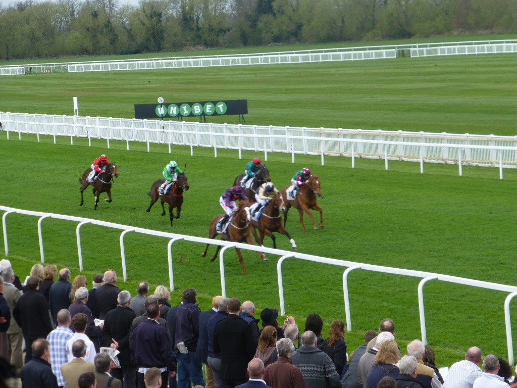 At the Races 02212