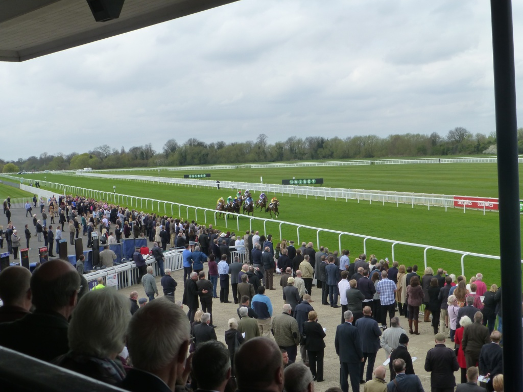 At the Races 02411
