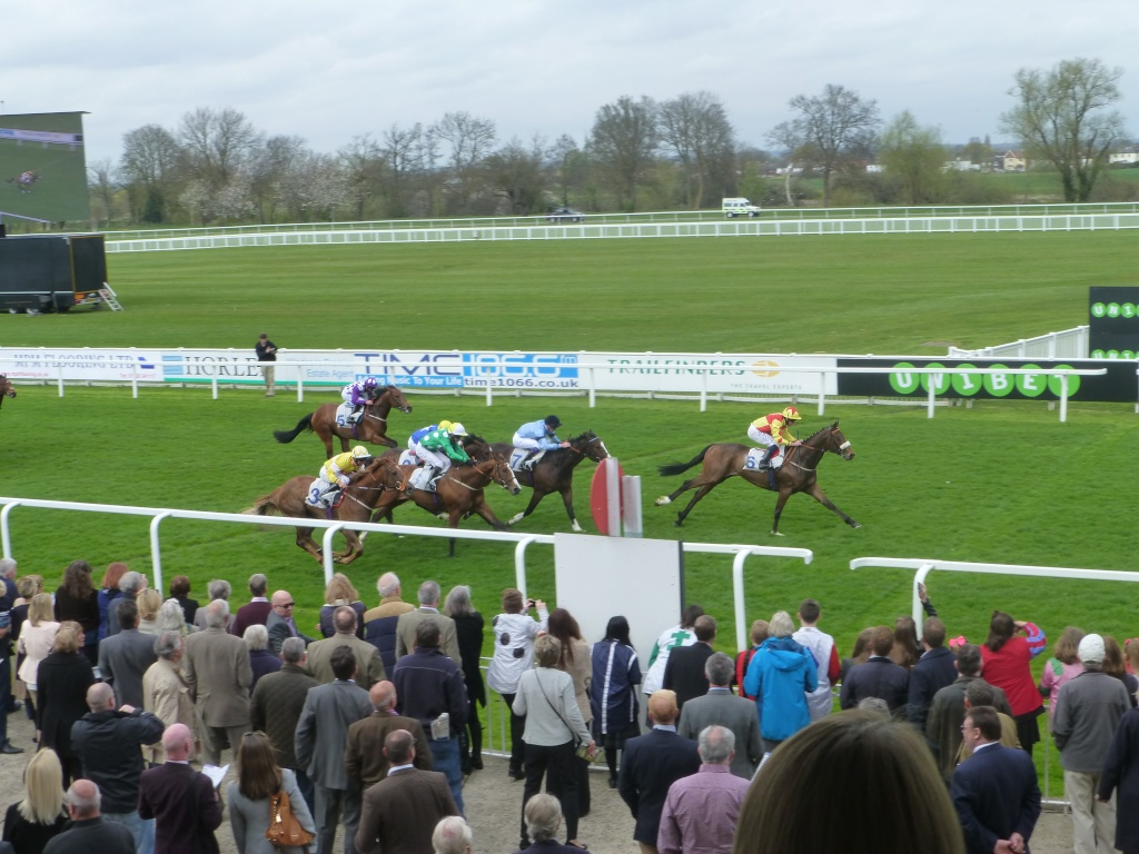 At the Races 02511