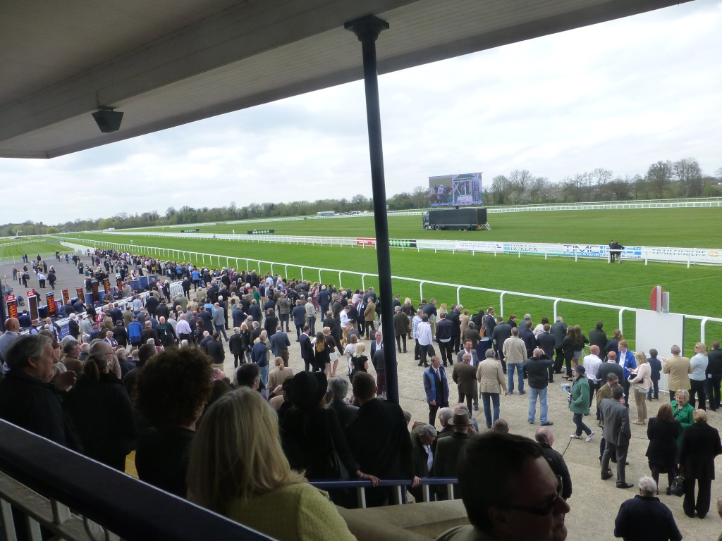 At the Races 03411