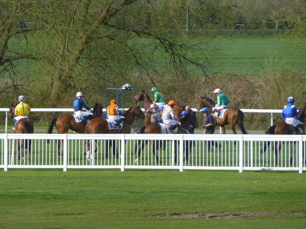 At the Races 06410