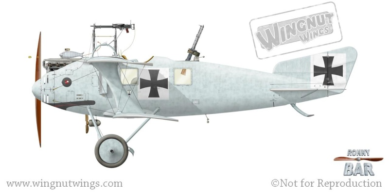 roland CII 1/32 wingnut wing A_rola10