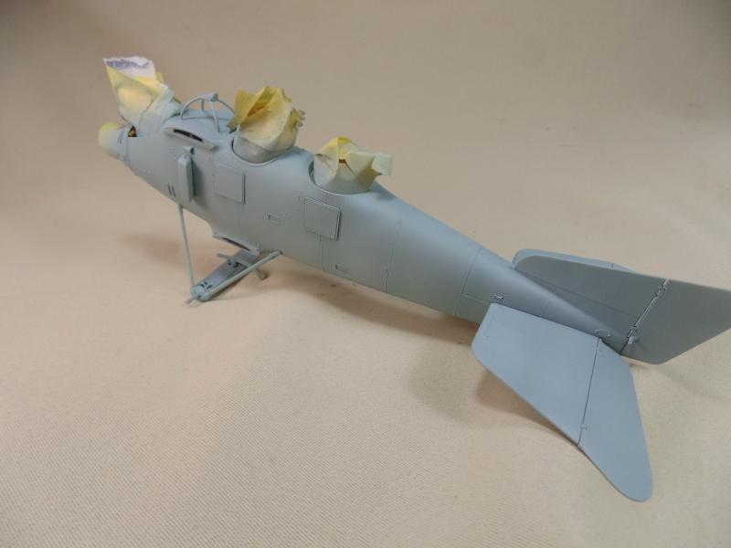 roland CII 1/32 wingnut wing Dsc00637