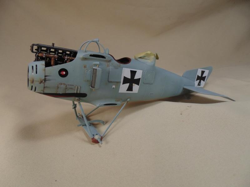 roland CII 1/32 wingnut wing Dsc00639