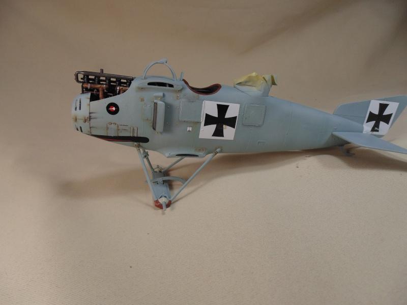 roland CII 1/32 wingnut wing Dsc00642