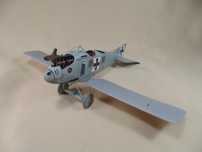 roland CII 1/32 wingnut wing Dsc00713