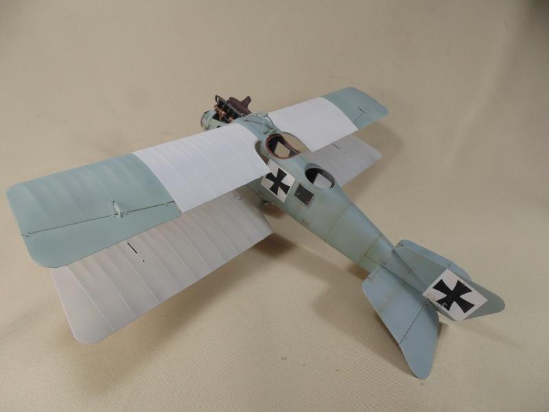 roland CII 1/32 wingnut wing Dsc00726