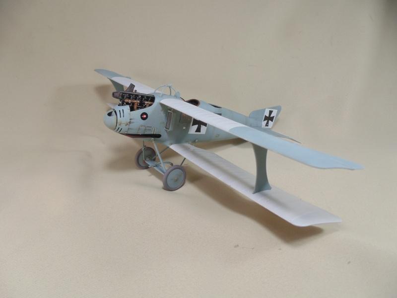 roland CII 1/32 wingnut wing Dsc00728