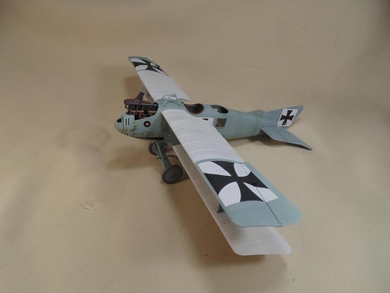 roland CII 1/32 wingnut wing Dsc00731