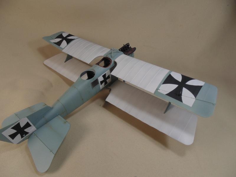 roland CII 1/32 wingnut wing Dsc00733