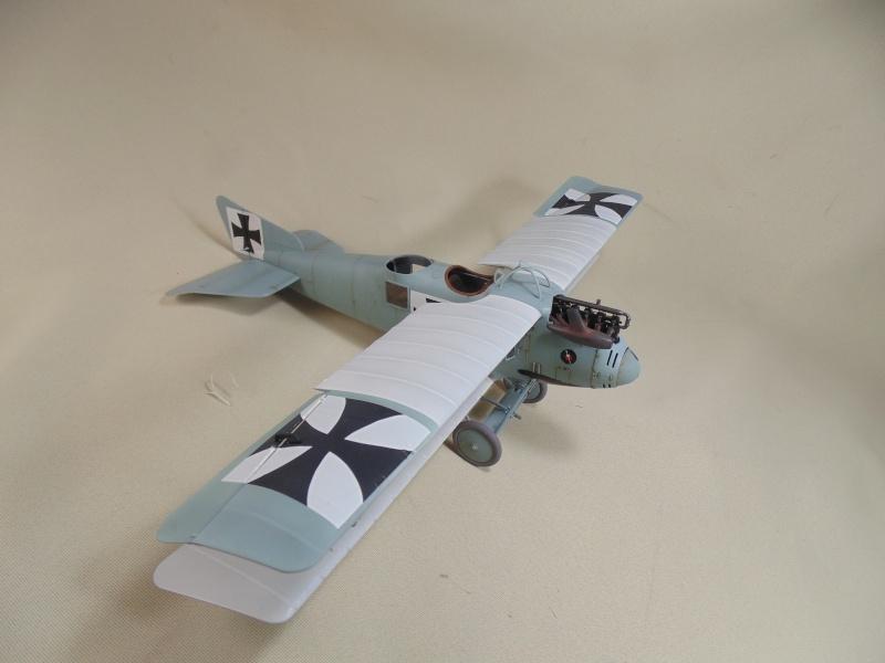 roland CII 1/32 wingnut wing Dsc00734