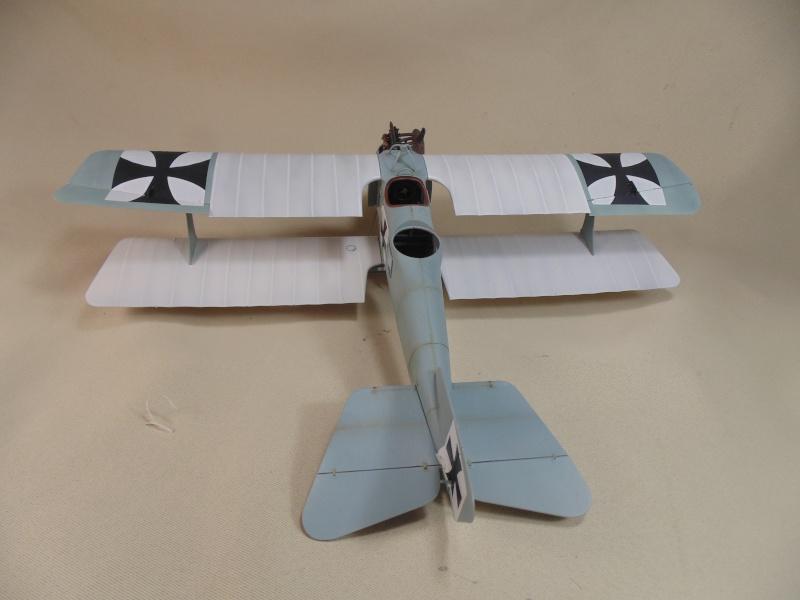 roland CII 1/32 wingnut wing Dsc00735
