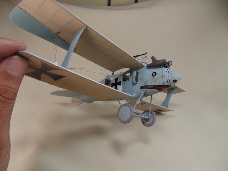 roland CII 1/32 wingnut wing Dsc00744