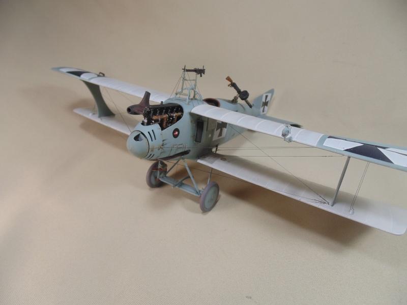 roland CII 1/32 wingnut wing Dsc00745