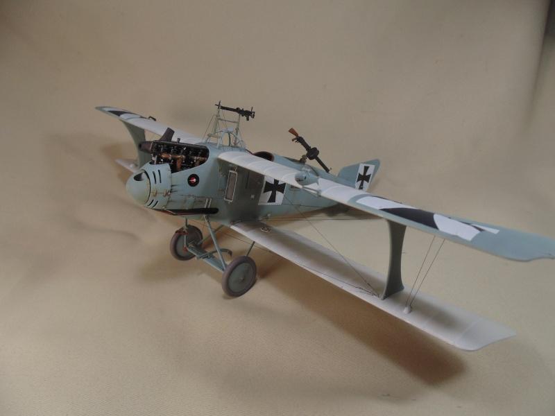 roland CII 1/32 wingnut wing Dsc00746